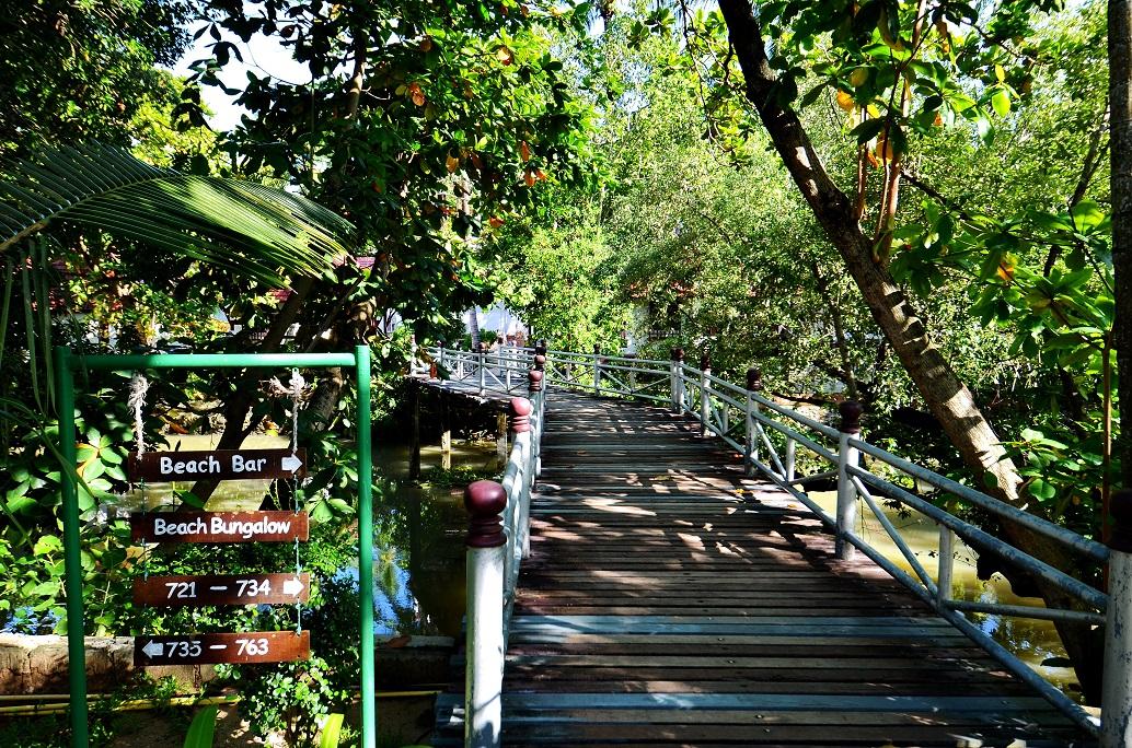 samui resort, resort samui, samui boutique resort, koh samui resort, resort koh samui, koh samui resorts, resort thailand, resorts samui Samui Group booking tour