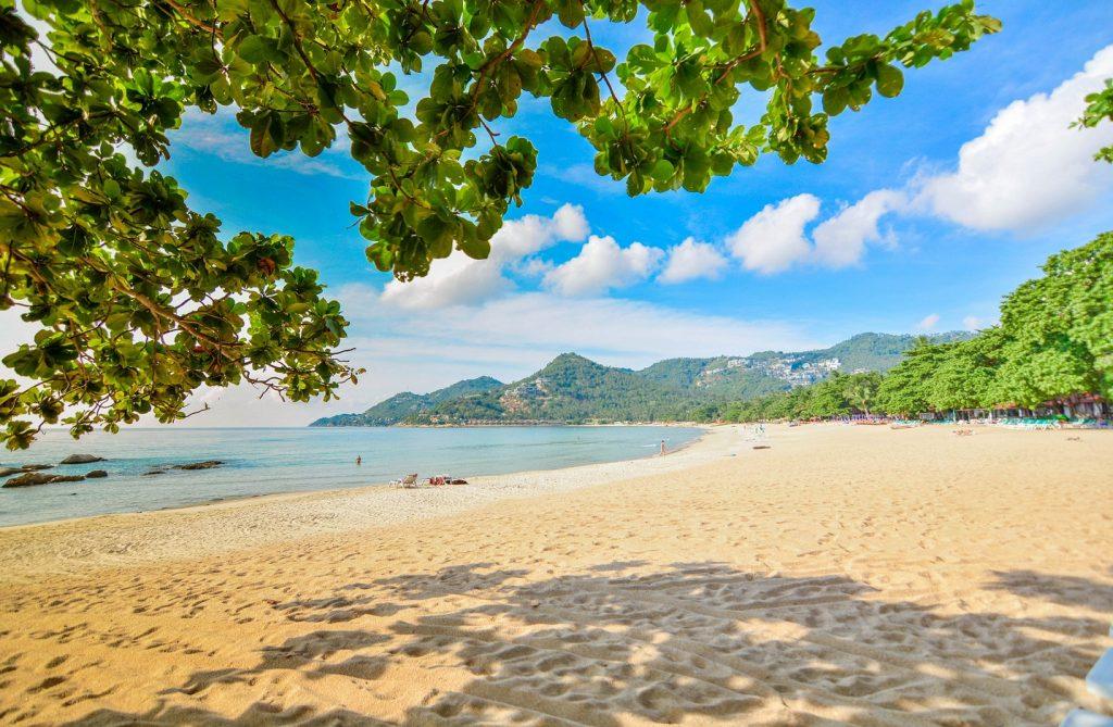 Koh Samui Hotels, Samui Beachfront, Chaweng Hotel, First Bungalow, Hotel Samui, rental Samui, booking room, Thailand, full moon party, koh phangan, koh tao samui festival samui event samui wea Koh